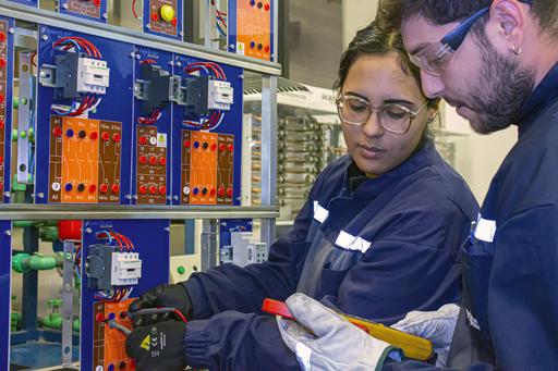 Técnico en Instalaciones y Proyectos Eléctricos