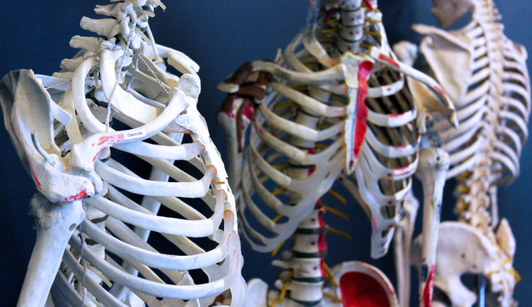 Técnico de Radiodiagnóstico y Radioterapia