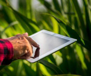 tecnología agricultura